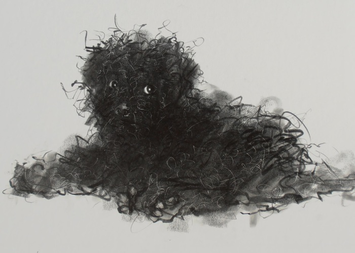 Gloomy Portraits Of Dogs That Seem To Fade Into The Paper