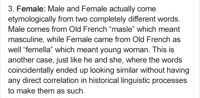 create-patriarchal-language-linguistic (6)