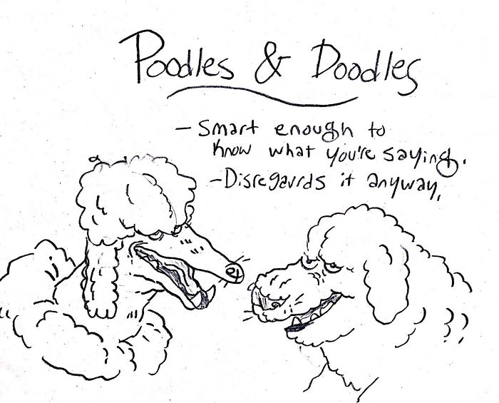 Dog-Breeds-Traits-Guide-Cartoons-Grace-Gogarty