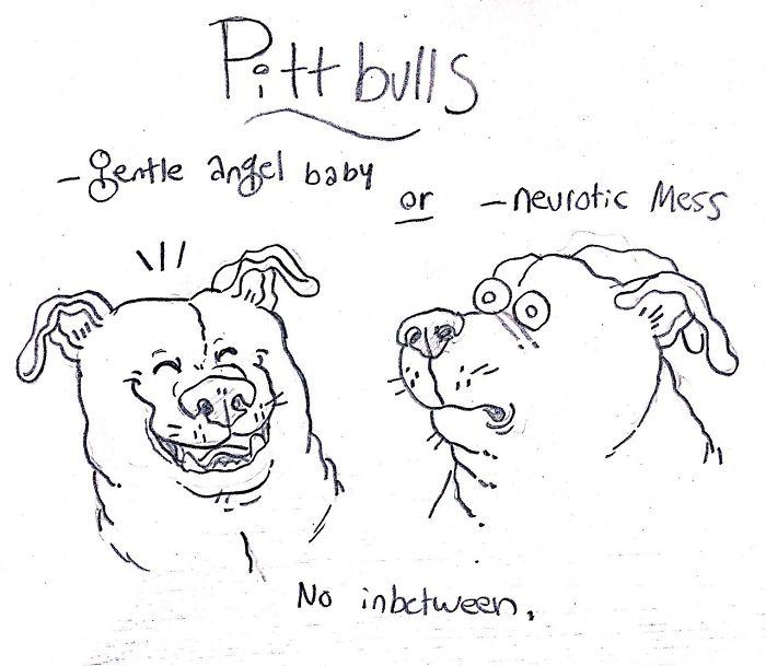 Собака-Гнездится-Черты характера-указательные Мультики-Грейс-Gogarty