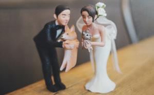 Las parejas han encontrado un modo de incluir a sus mascotas en su boda, y es genial