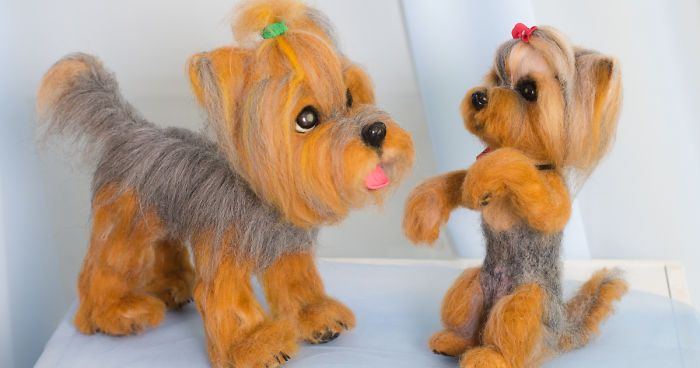 What Are These Cute Little Yorkies Made Of What Do You Think