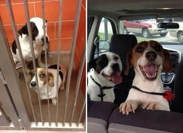From Cellmates To Lifemates