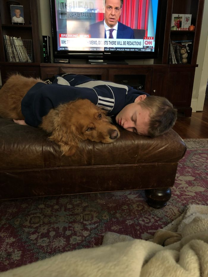 My Son Home From School, Sick. Scout Comforting Him.