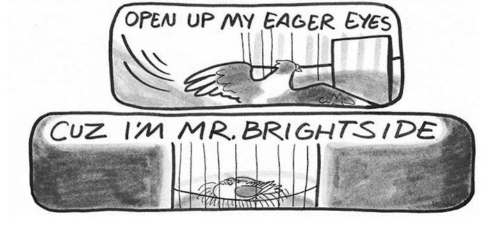 pigeon-comics-mr-brightside-the-killers-(3)a