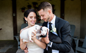 Instead Of Wedding Bouquets This Couple Had A Bunch Of Rescue Puppies And The Pics Turned Out Adorable