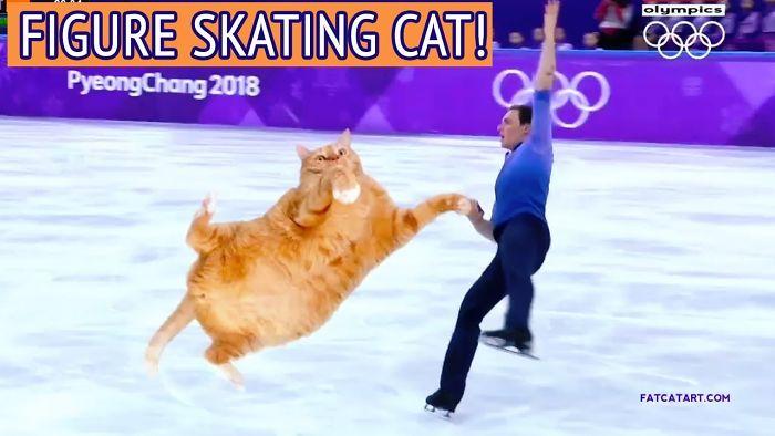 Figure Skating Cat