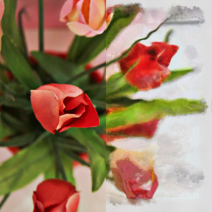 I Shot Some Flowers And Then Painted Half Of The Photo To Show The Difference Between Photography And Painting