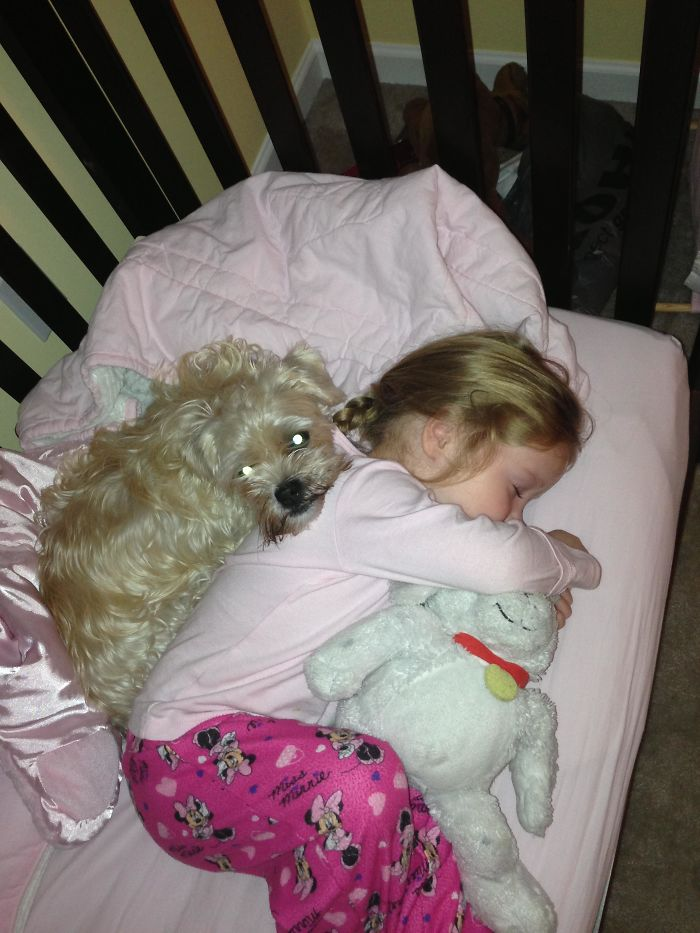 My Daughter Was Sick And Our Dog Wouldn't Leave Her Side
