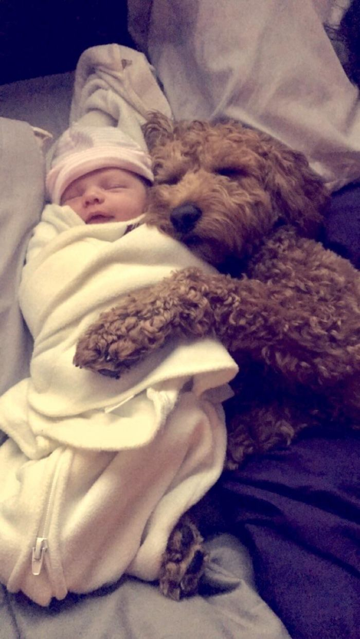 My Dog And Newborn Daughter Are Already BFF's