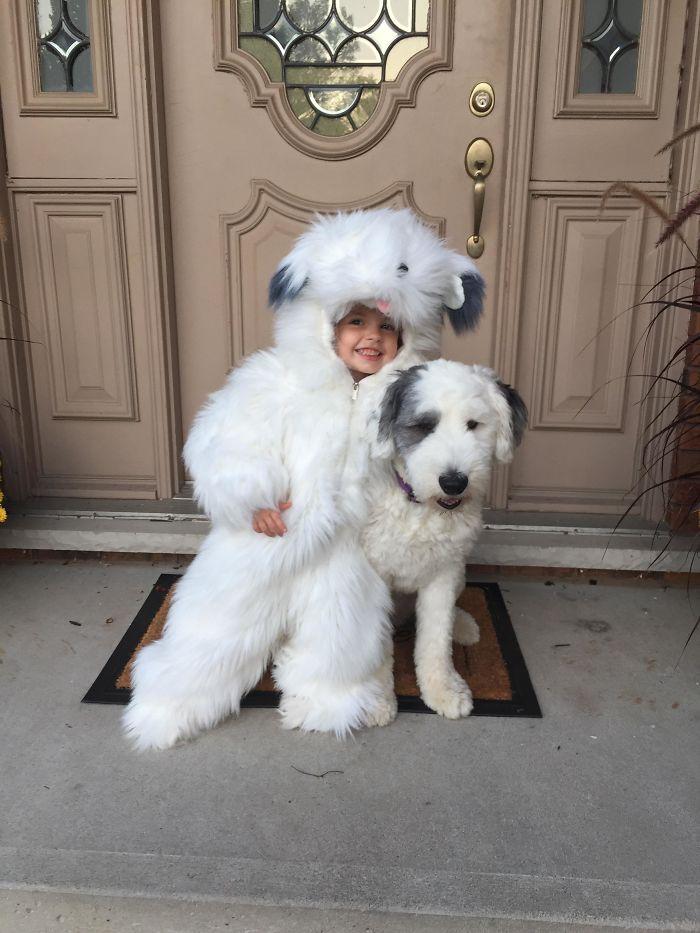 Mi hija quiso ser un perro ovejero en Halloween