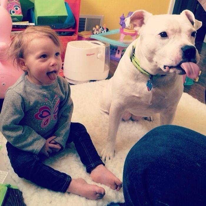Hija y perro pidiendo comida... ambos con la lengua fuera