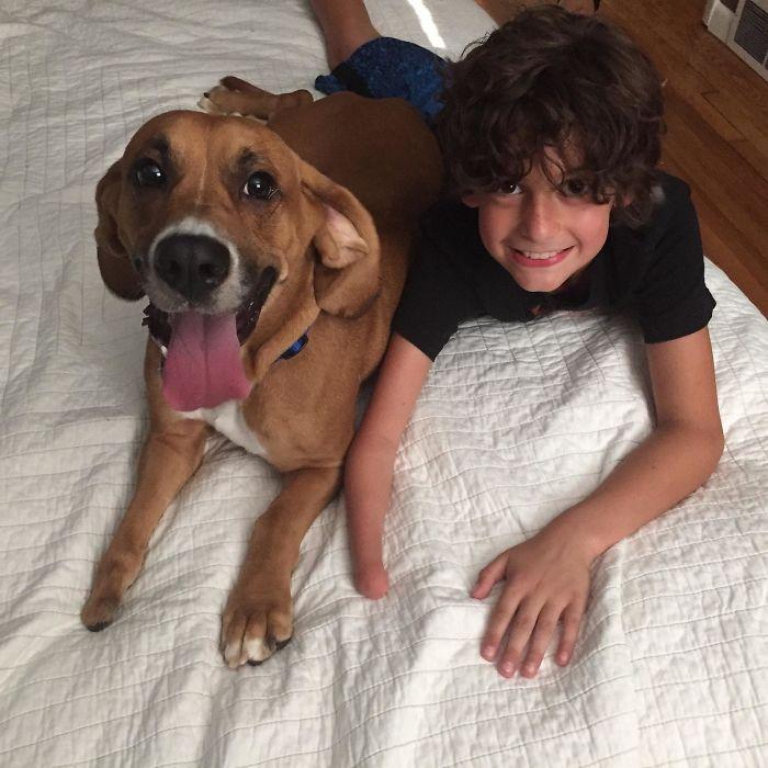 Llevamos tiempo buscando un amigo para nuestro hijo de 10 años, y al fin encontramos uno perfecto