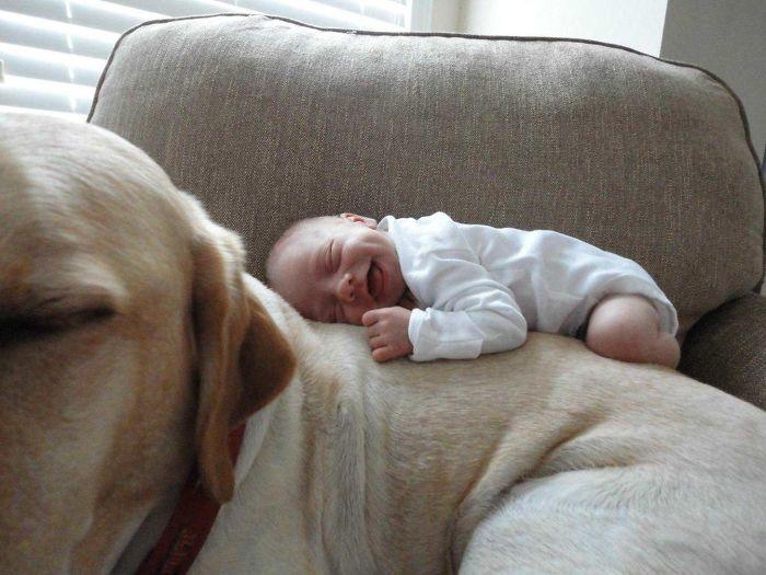Mi sobrina y su labrador