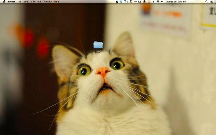 Mi fondo de pantalla