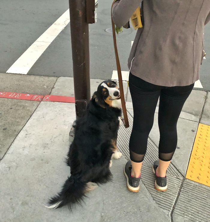 Was Trying To Sneak A Photo When This Pretty Girl Suddenly Turned Around And Flashed Me This Big Smile