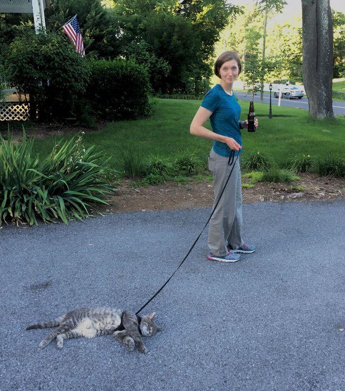 My Wife Tried To Walk The Cat