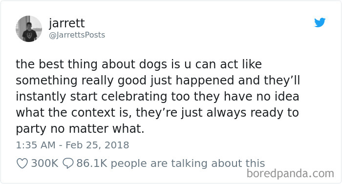 We Don't Deserve Dogs