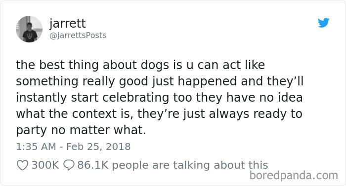 We Don't Deserve Dogs