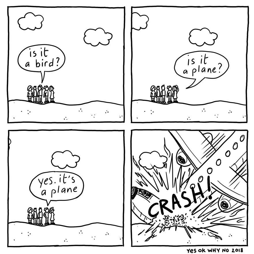 Bird Or Plane
