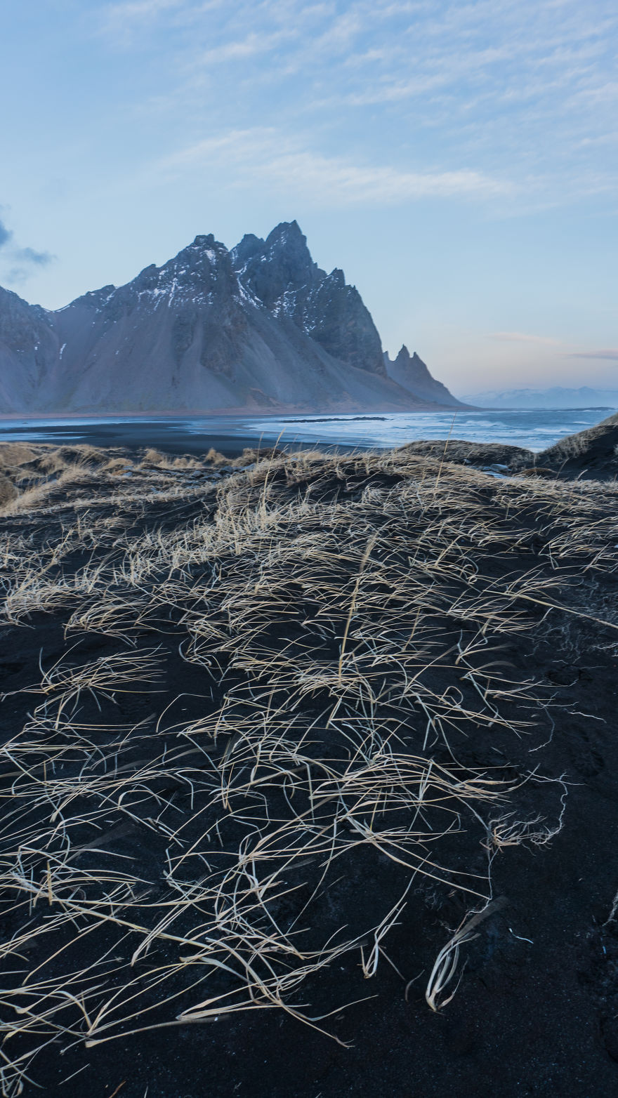 Vestrahorn Grasses