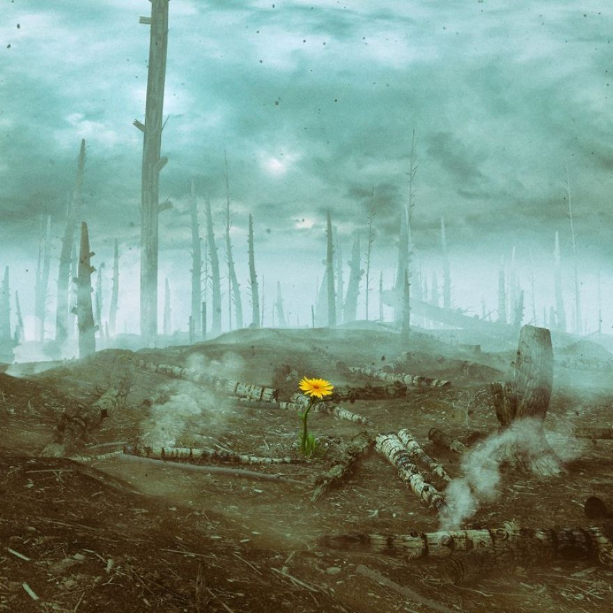 The Artist Spent The Last Decade Composing One Image Per Day