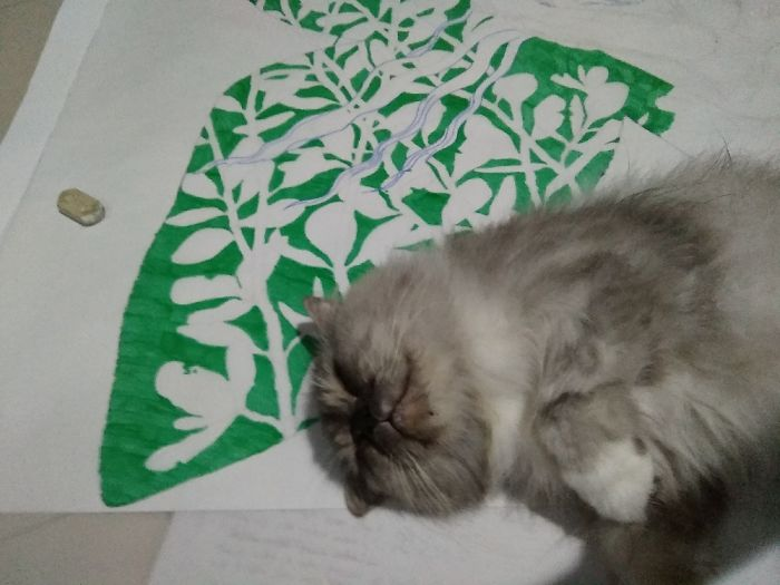 When I Want To Finish My Drawing, But This Guy Decide To Sleep On The Paper,