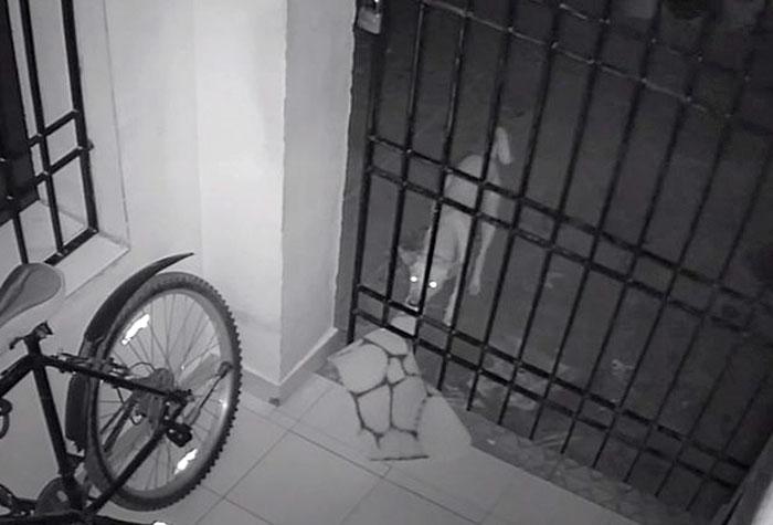 caught-doormat-robber-roshni (10)