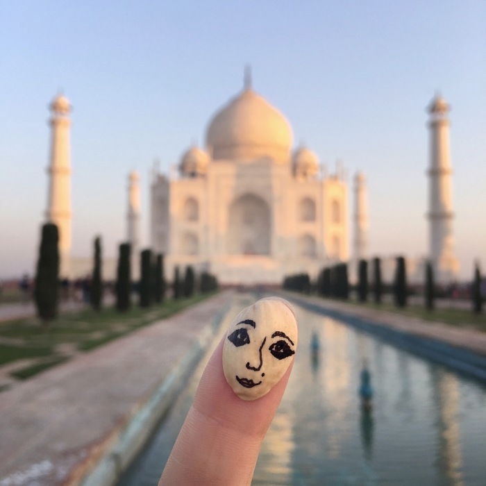 Pisface – Art Abandonment Project Of Travelling Pistachio Face