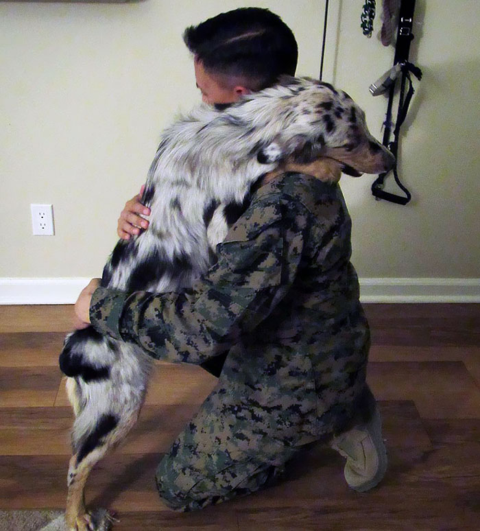 Veterans Day Hug