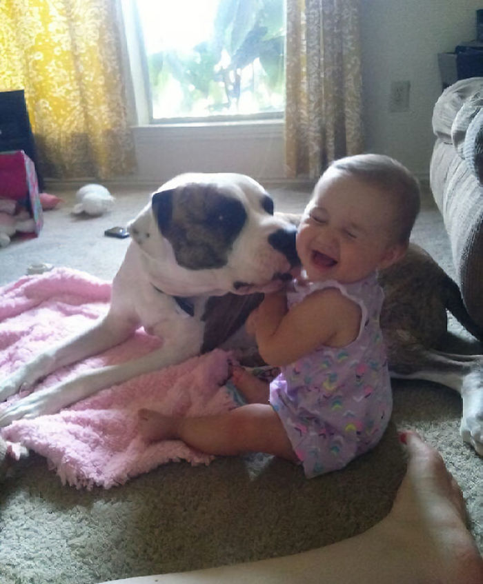 This About Sums Up The Relationship Of My Daughter And Dog