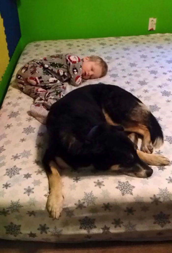 "My Son Has Epilepsy And Bear Comforts Him After A Seizure And ""Watches"" Him"