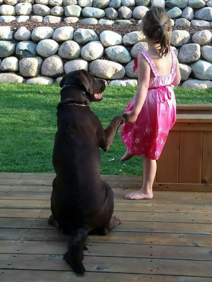 How I Found My Daughter And Our Lab On The Deck