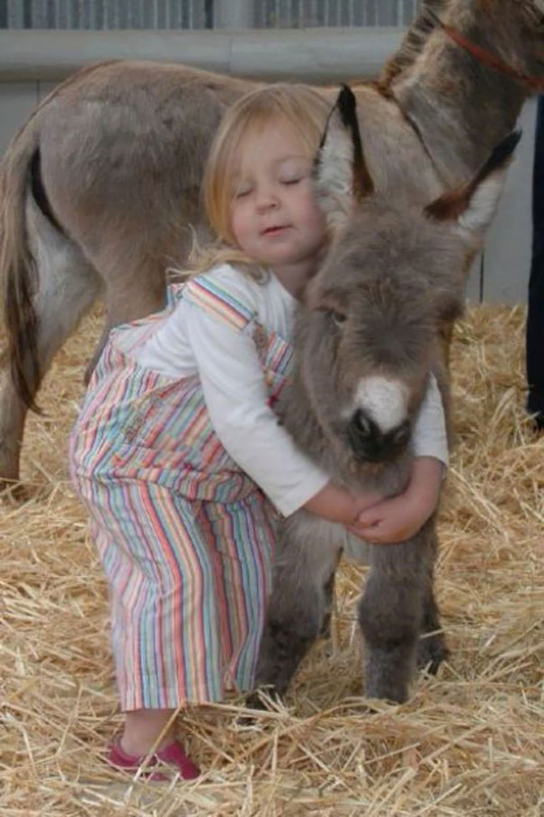 Girl With Her Baby Donkey Friend