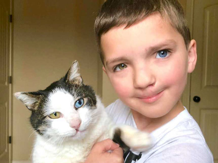 Bullied 7 Year Old Finds Cat With Same Rare Eye Condition And Cleft Lip And It S Like Destiny Exists Bored Panda