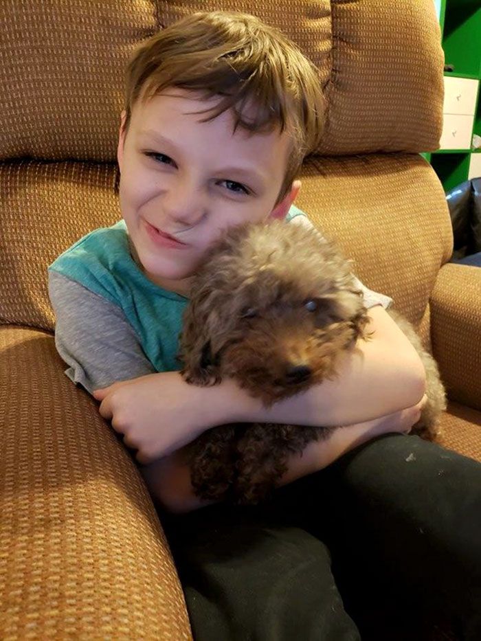 This Little Boy Adopted The Oldest Dog In The Shelter. Tristan Was Bullied At School And Shey's Owners Left Him Behind When They Moved. Now They Both Have A New Best Friend