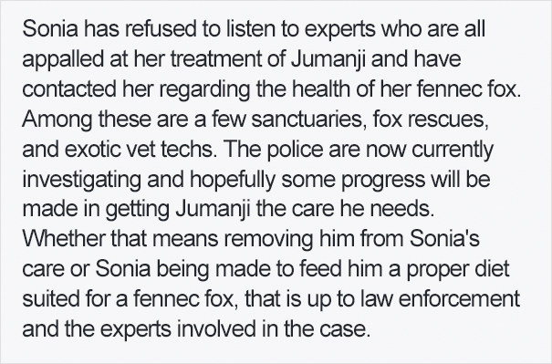 fennec-fox-vegan-diet-animal-abuse-jumanji-sonia-sae-44