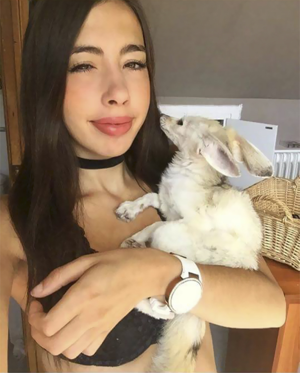Vegan Woman Forced Her Fennec Fox To Go Vegan, And Here's
