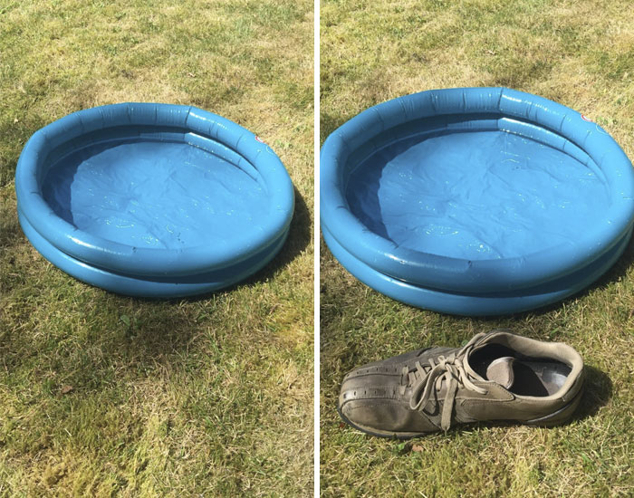 To Be Fair My Wife Did Think This Paddling Pool Was Suspiciously Cheap
