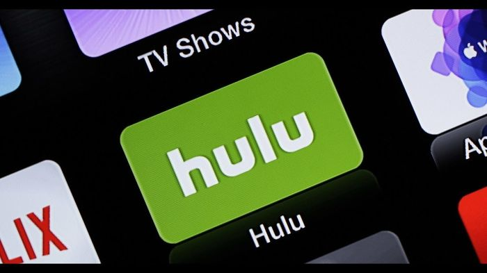 What Are The Steps For General Troubleshooting For Hulu Supported Device?