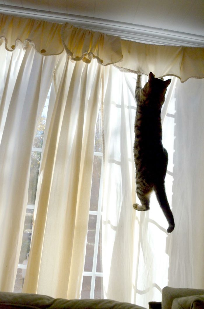 Just Hanging Around >.