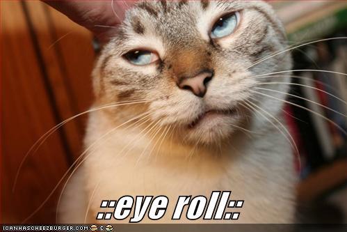 kitteh_eye_roll-5a9ebe9005b4d.jpg