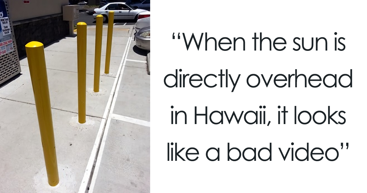 20+ Times People Got Seriously Confused By Accidental Optical Illusions In Everyday Things