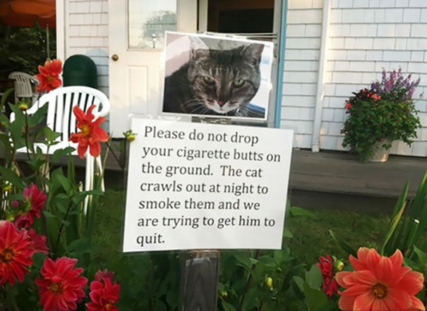 143 Of The Funniest And Most Passive Aggressive Neighbor