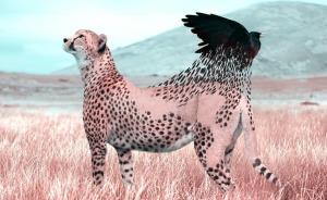 Este artista francés usa Photoshop de forma ingeniosa para crear animales fantásticos