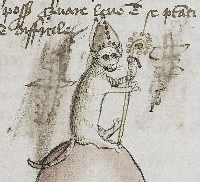This Bishop Cat