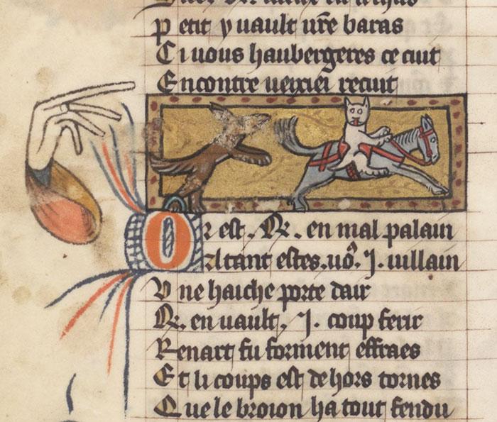 Defiant Cat Riding A Horse
