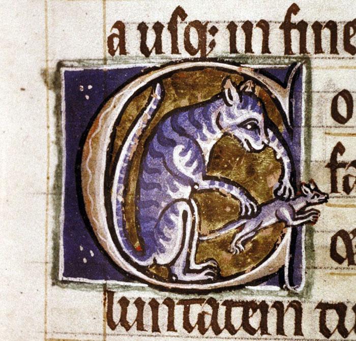 Initial Cat