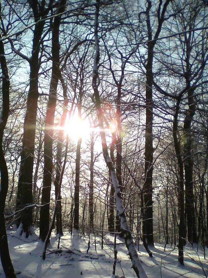 3 Winter Snapshots …