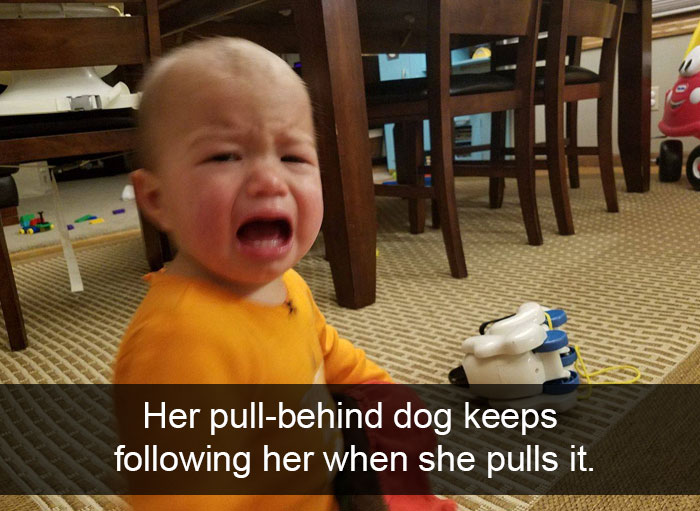 Her Pull-Behind Dog Keeps Following Her When She Pulls It